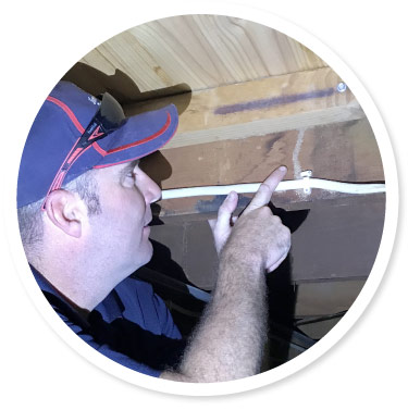 Termite Inspection Adelaide